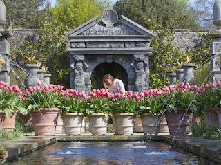 Annual Tulip Festival at Arundel Castle