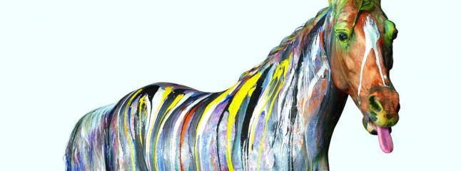 Horse Whispers by Johny Dar
