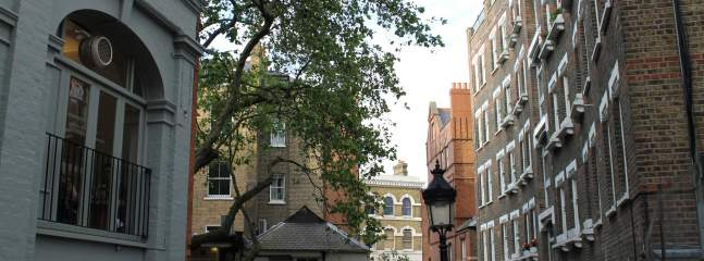 A Cultural Guide to Hampstead