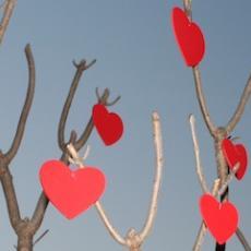Alternative Valentine's Day Events