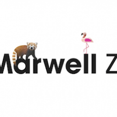 VIDEO: A Fun Day Out at Marwell Zoo