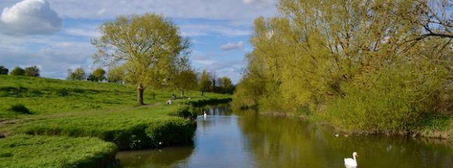 Top 5 Spring Walks in Cambridge