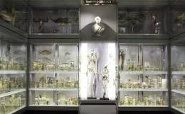 Last Chance to See: The Hunterian Museum