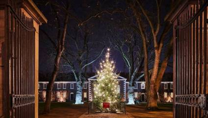 Landscape of the front of the Geffrye Museum and Gardens with a christmas tree