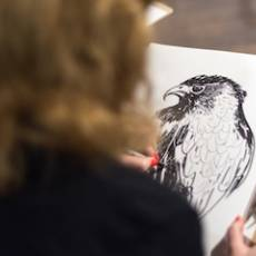 Win 2 Tickets to a British Birds Drawing Class